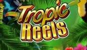 Free Tropic Reels Slot Online