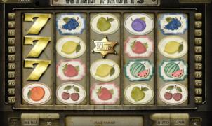Free Slot Online Wild Fruits